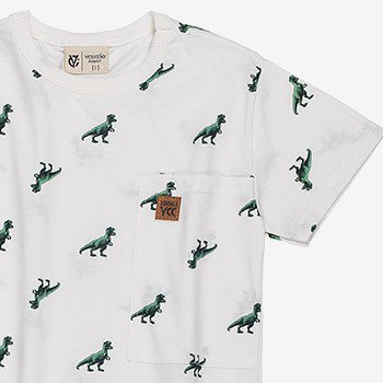 camiseta infantil dinossauro manga curta youccie i0046